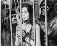 LINDA HARRISON & SOME 'APES'
